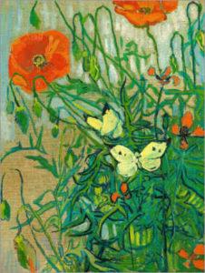 Papaveri e farfalle_Vincent van... </p srcset=